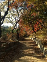 Deoksugung Palace - beautiful walking paths.