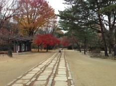 View on entering the Jongmyo Shrine.