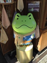 Angry looking frog.