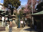 View of the small, but pretty, shrine grounds.