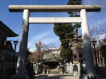 Torii gate on the other side of this shrine.
