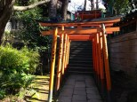 Row of torii gates. Will told me they often denote individual donors.