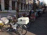 Bikes are everywhere.