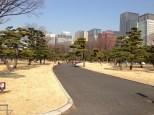 Lovely open park.