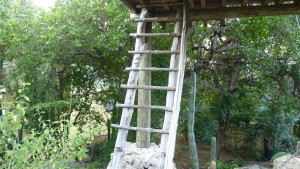 Entrance to Kura Hulands's tree house - Travel Accommodations for Adventurous Retirement