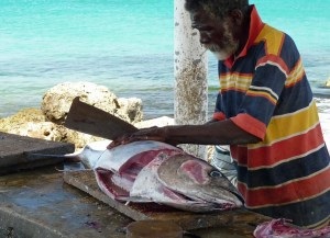 Buy fresh fish in curacao - cut on dotted line