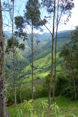 Atahualpa-Hacienda-mountains-valley-view-3- Cotacachi, Papallacta, Atahualpa