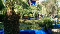 morocco jardin majorelle
