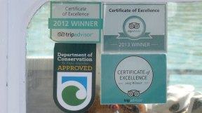 Coast Up Close Wildlife Adventures Certificates of Excellence from Trip Advisor