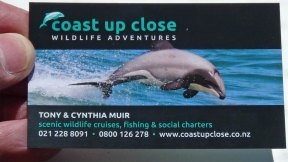 Akaroa New Zealand - Coast Up Close Wildlife Adventures contact details