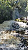 Niagra Falls Catlins