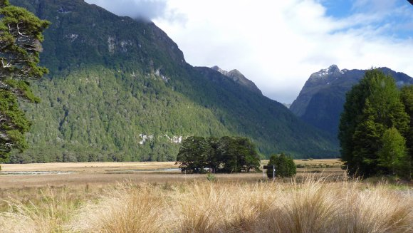 Eglinton Valley along Milford Road; road trip to Milford Sound with Fiordland Tours