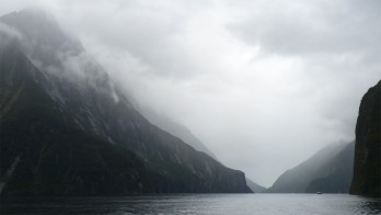 Misty view of Milford Sound, while on a cruise with Cruise Milford