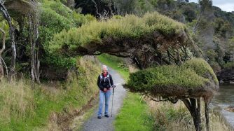 stewart-island-wendy-trail