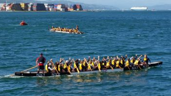 Dragonboats practice in Wellington Harbour