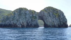 Tutukaka Poor Knights arch