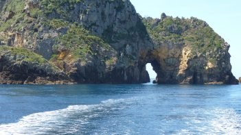 Tutukaka - Dive! Tutukaka - Poor Knights arch formation