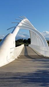 Taranaki New Plymouth coastal walkway Te Rewa Rewa bridge