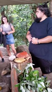 Mossman Gorge Kuku Yalanji demonstrates traditional uses of local plants