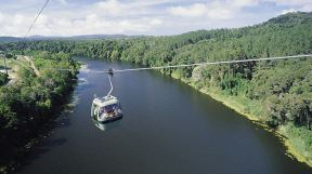 Skyrail Gondola over Barron River