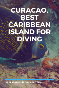 Curacao, The Best Caribbean Island for Diving with angelfish in background