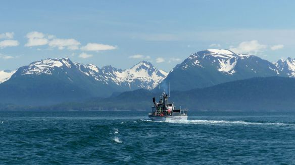 kachemak-bay-has-the-best-alaska-fishing-trips
