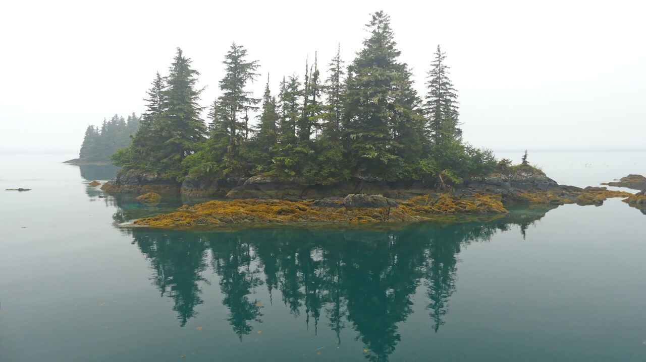 Small quiet island in Prince William Sound