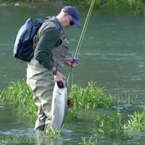 salmon-ship-creek-anchorage-Bucket-list-10-day-self-guided-alaska-kenai-peninsula-itinerary