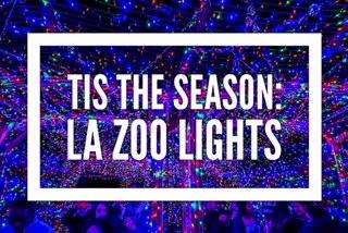 'Tis the Season: LA Zoo Lights 2017