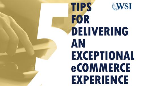 5 Tips for Delivering an Exceptional eCommerce Experience - eBook