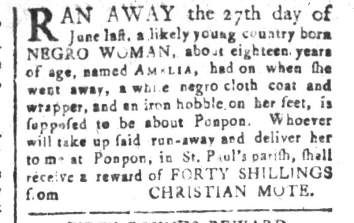 Aug 21 - South-Carolina and American General Gazette Slavery 6