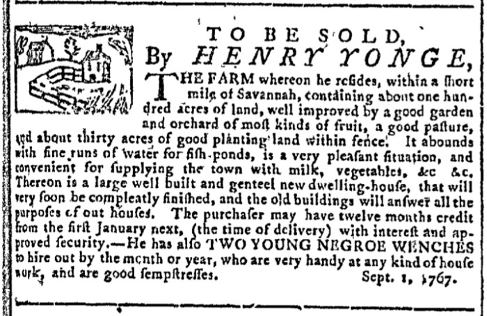 Sep 2 - Georgia Gazette Slavery 1