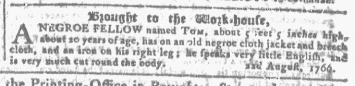 Nov 11 - Georgia Gazette Slavery 9