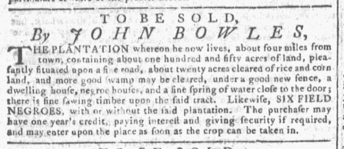 Oct 28 - Georgia Gazette Slavery 3