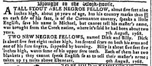 Aug 10 - Georgia Gazette Slavery 2