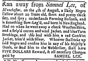 Aug 8 - Boston Evening-Post Slavery 1