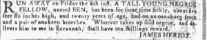 Jul 20 - Georgia Gazette Slavery 6