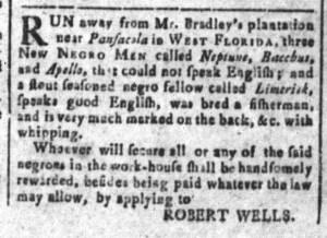 Aug 12 - South-Carolina and American General Gazette Slavery 2