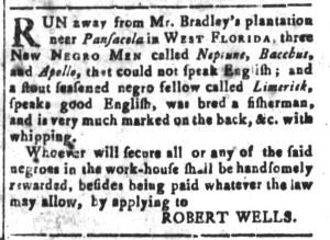 Aug 26 - South-Carolina and American General Gazette Slavery 8
