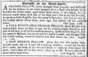 Aug 31 - Georgia Gazette Slavery 8
