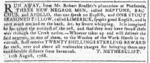 Sep 14 - Georgia Gazette Slavery 5