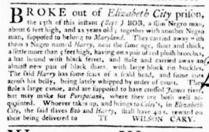 Sep 29 - Virginia Gazette Purdie and Dixon Slavery 6
