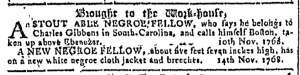 Nov 16 - Georgia Gazette Slavery 1