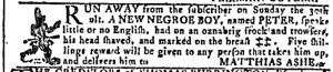 Nov 9 - Georgia Gazette Slavery 8