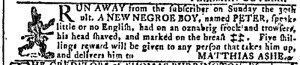 Nov 9 - Georgia Gazette Slavery 8