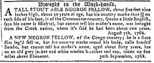 Oct 19 - Georgia Gazette Slavery 8