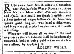 Oct 21 - South-Carolina and American General Gazette Slavery 4