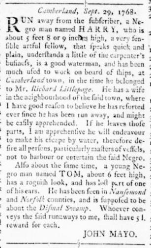 Oct 27 - Virginia Gazette Rind Supplement Slavery 2