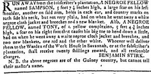 Aug 16 - Georgia Gazette Slavery 5