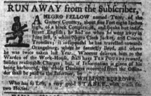 Aug 24 - South-Carolina Gazette Slavery 5